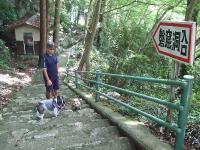 2008_0916葡萄狩り0052
