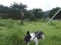 2009_0814鹿児島0027