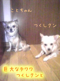 GRP_0003-1.jpg