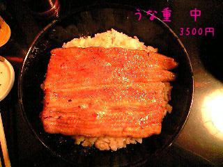 PA0_0001_20090712203258.jpg