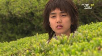 茶畑の王子