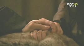 手をとるホゲ