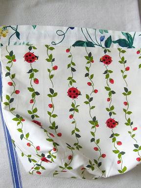 ⑤内布はテントウムシとイチゴ
