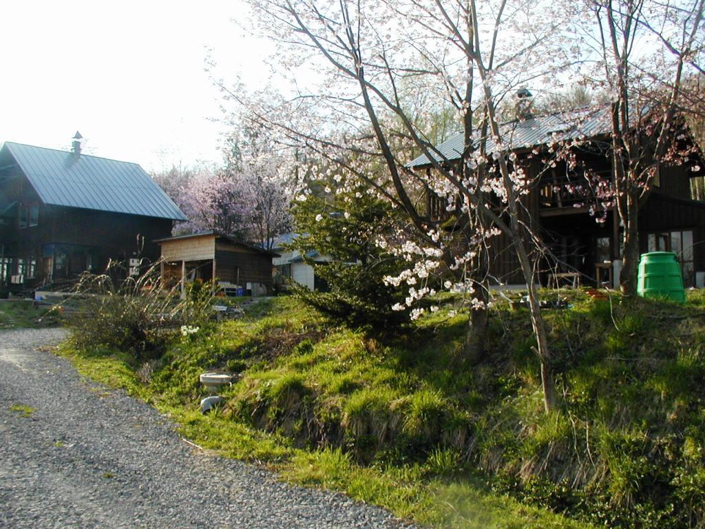 P1010148桜と家