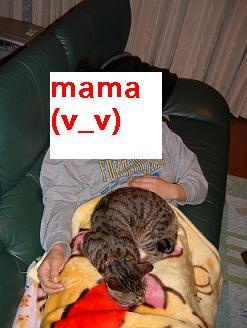 mama1.jpg