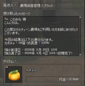 2_20090304013705.jpg