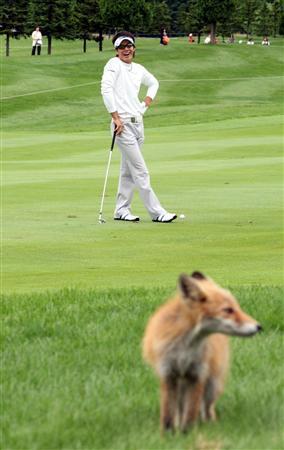20090730-00000541-san-golf-view-000.jpg