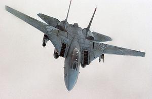 300px-US_Navy_F-14D_Tomcat_28226846778829.jpg
