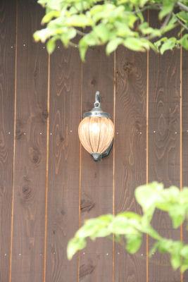 【森めぐ】ランプみたいね