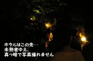じぇんじぇん映りませんの…(T_T)