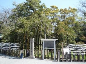 天然記念物の金木犀