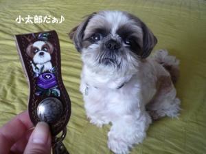 これも小太郎♪