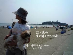 江ノ島も見えます