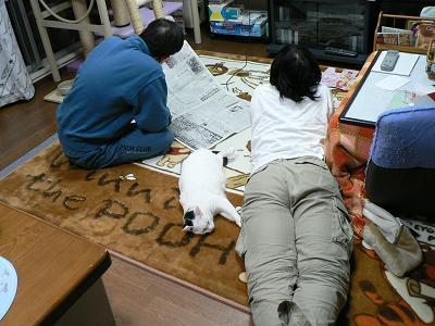sizukun2007-3-8_5.jpg