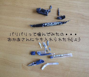 20060606190610.jpg