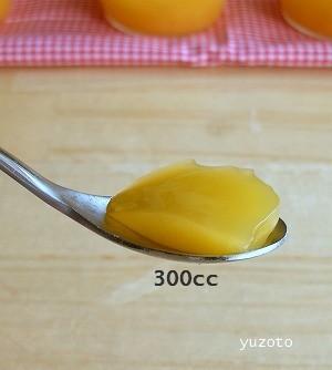 粉ゼラチン300cc