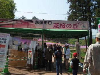 芝桜入り口