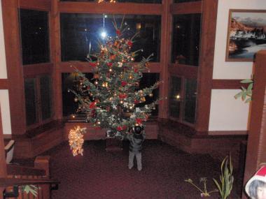 ホテルのツリー