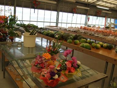 沖縄2009春2009_0402_091743