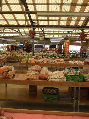 沖縄2009春2009_0402_092732
