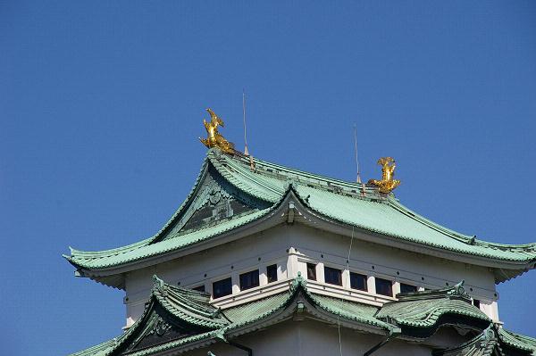 金鯱(きんしゃち)
