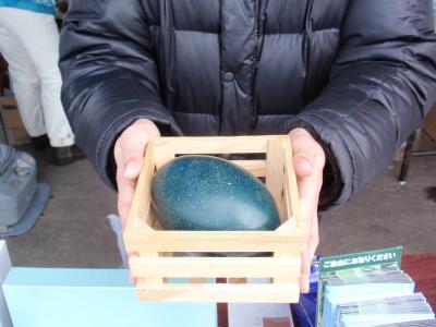 網走(エミューの卵)