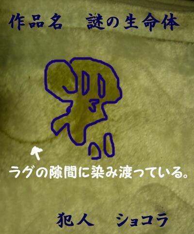 20080224120526.jpg