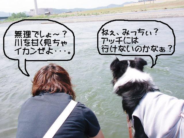 みっちぃ&くま