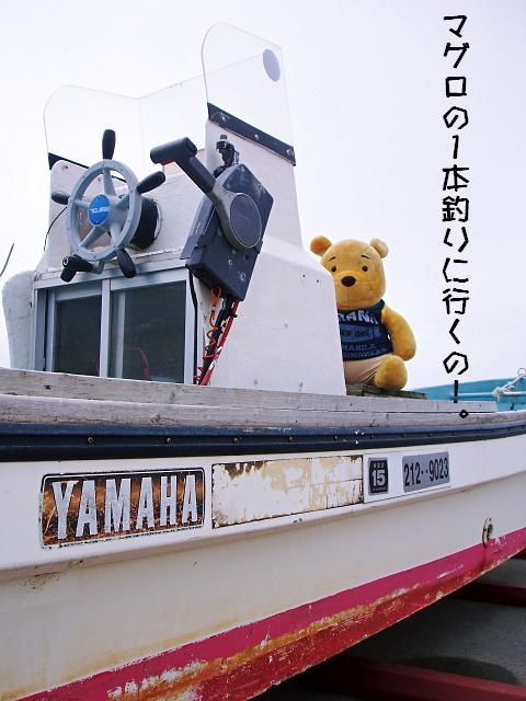 え・・・その船はマグロ釣り船ではナイと思うのですが・・・。