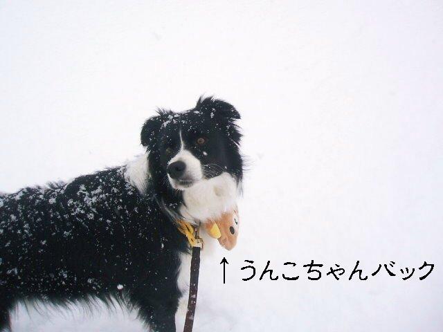 道路も雪~