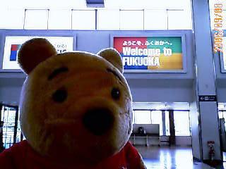 IMG_fuoka.jpg