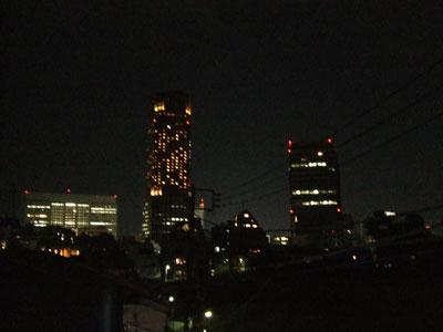 夜のセルリアン