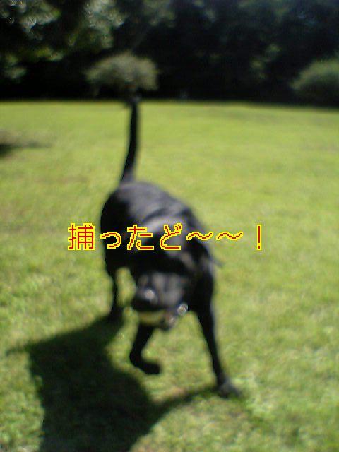 20060929235703.jpg