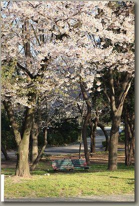 09春名城 089