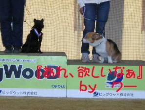 hyoushousiki2.jpg