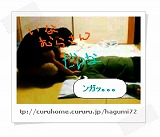 image5566339.jpg