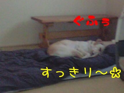 CA390386.jpg