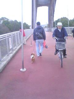 ホッと散歩2
