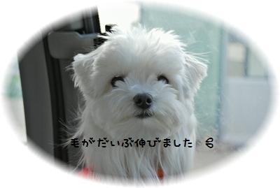 CSC_0687.jpg