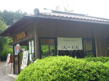 花の茶屋2
