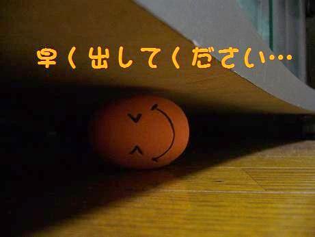 緒連路ちゃんの憂鬱