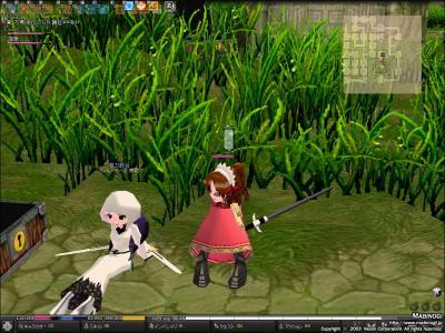 mabinogi_2009_01_10_030.jpg