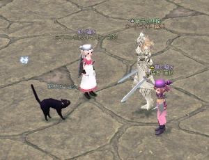 猫に襲われるパラ