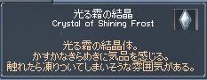 光る霜の結晶