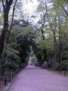 ただすの森