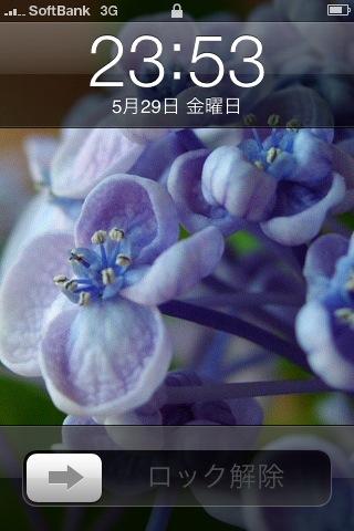 top_001.jpg