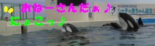 20060515230813.jpg