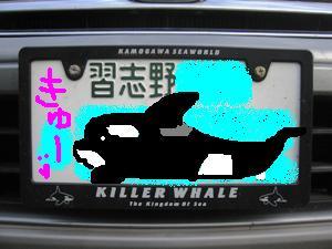 20060820000434.jpg