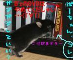 20070510002702.jpg