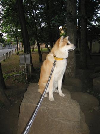 羽村にフク公像?!